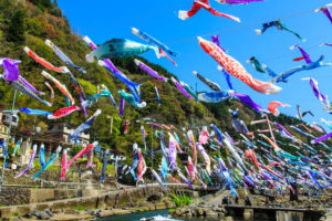 たくさんの鯉のぼりの写真